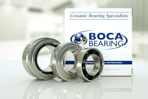 Dental Tool Bearings