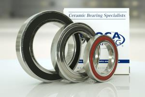 Electric Motor Quality (EMQ) Bearings